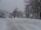 Χιονόπτωση στη Φυλακτή 30/31-12-15_12