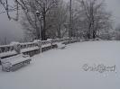 Χιονόπτωση στη Φυλακτή 30/31-12-15_20