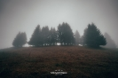 Ειδυλλιακό τοπίο με ομίχλη στη Λίμνη Πλαστήρα _4
