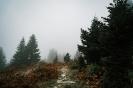 Ειδυλλιακό τοπίο με ομίχλη στη Λίμνη Πλαστήρα _6